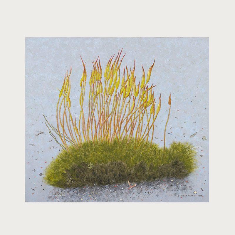 Hannelore Teutsch | Blühendes Moos | Tempera auf Leinwand | 2018 | 50 x 55 cm